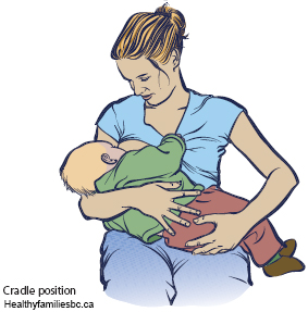 1.Cradle position for Breastfeeding.jpg